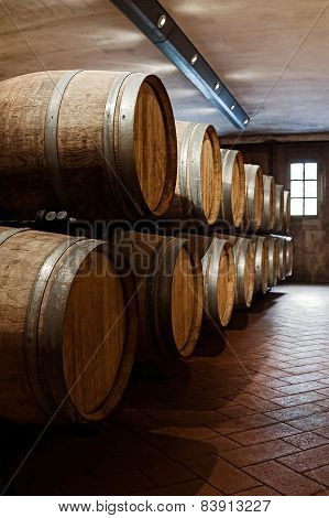 Oak barrels in a cellar