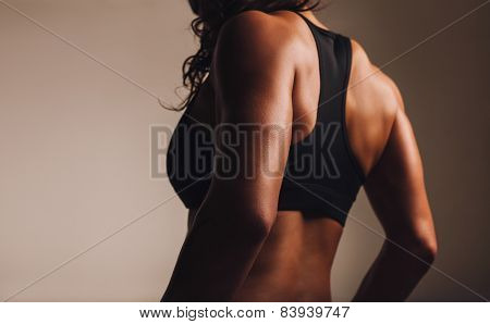 Back Of A Fit Woman Athlete In Sports Bra