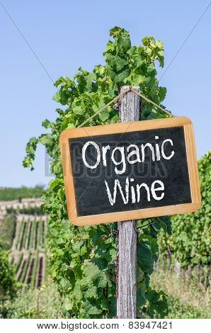 A blackboard in the vineyards - Organic Wine