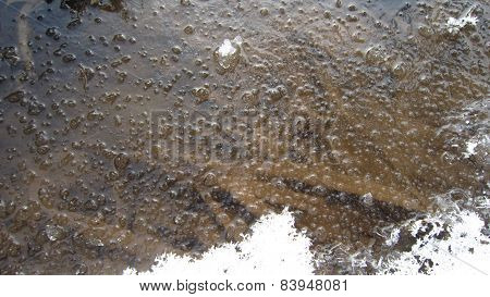 River sludge