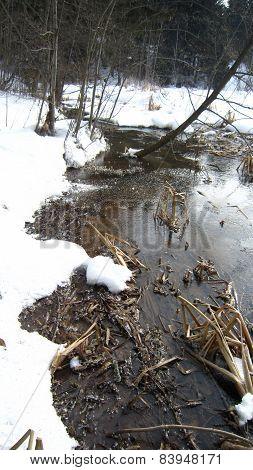 Winter laguna