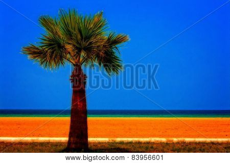 A Digitally Converted Painting Of A Lone Palm Tree At The Seaside