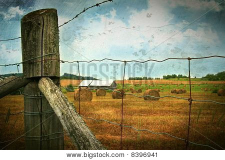 Field Of Freshly Cut Bales Of Hay