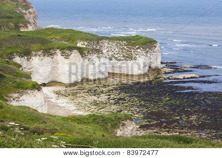 Rugged Clifftops At Flamborough Head