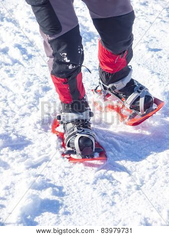 Feet In Snowshoes.