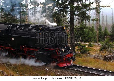 Narrow gauge railway locomotive