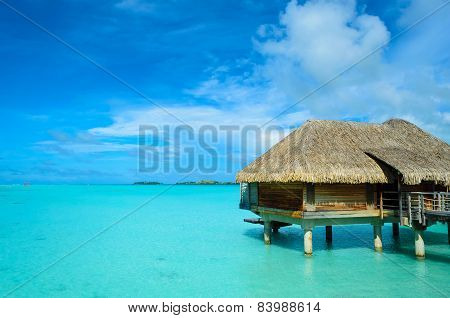 Luxury Thatched Roof Honeymoon Bungalow