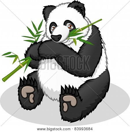 High Quality Giant Panda Cartoon Vector Illustration