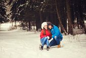 picture of sled  - Happy couple in winter forest sitting on a sled - JPG