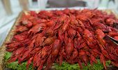 image of cooked blue crab  - Red cooked crayfish as a snack on a golden tray - JPG