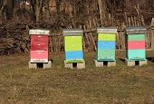 stock photo of honey bee hive  - Bee Hive boxes - JPG