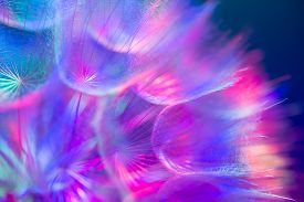 pic of pastel  - Colorful pastel background  - JPG