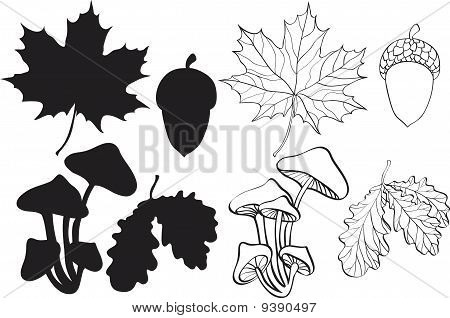 Set Of Silhouette Autumn Plants