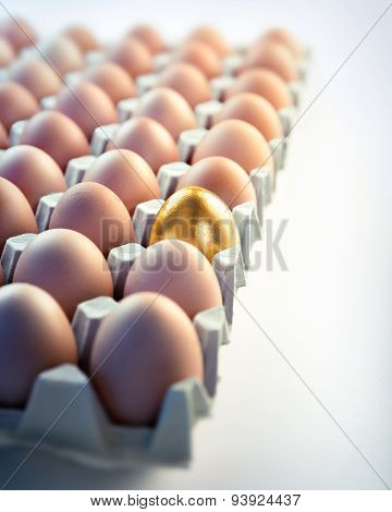 Golden egg in box - value concept in business