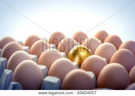 Golden egg among hen eggs in package