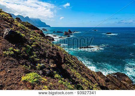 Coast Of Ocean With Rock