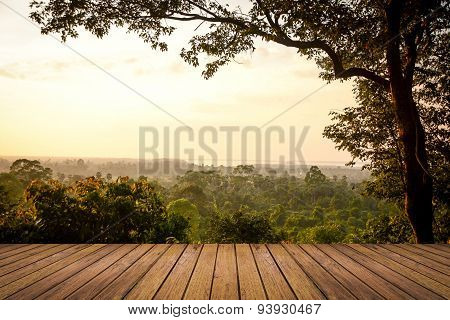 Forest Landscape And Wood Floor