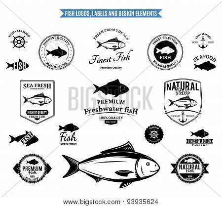 Fish Labels And Design Elements