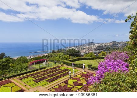 Tropical Botanical Garden In Funchal, Madeira Island, Portugal