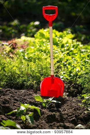 Closeup Photo Of Shovel On Garden Bed At Sunny Day