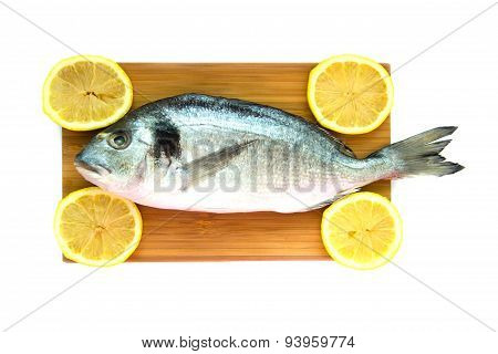 Uncooked Fish Dorado On Wooden Board