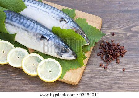 Fresh mackerel in grape leaves
