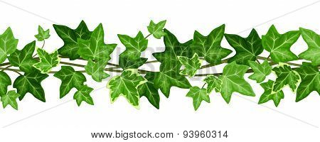 Horizontal seamless garland with ivy leaves. Vector illustration.