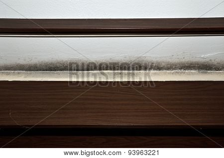 Mold Above The Window