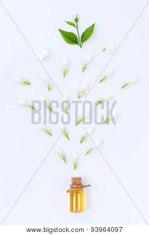 Essential Aroma Oil With Jasmine On White Background