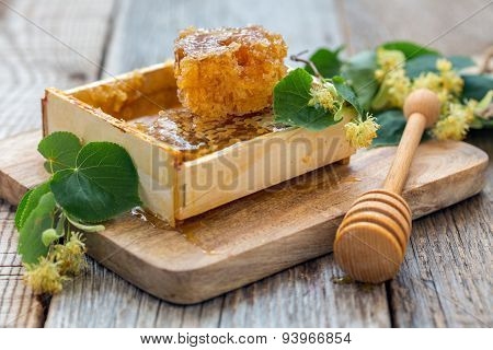 Honey Comb And Linden Flowers.