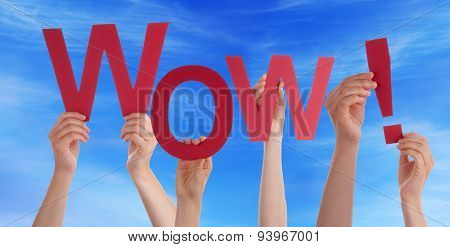 Many People Hands Holding Red Word Wow Blue Sky