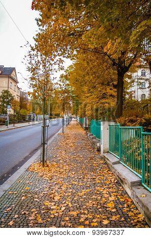 Street View In Karlovy Vary