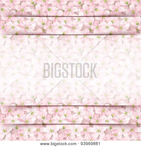 Pink card with apple flowers. Vector eps-10.