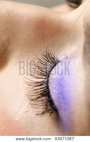 Eyelashes Close up