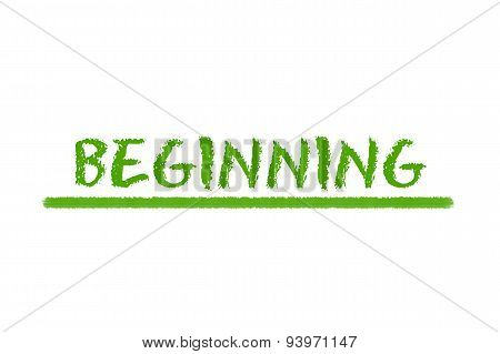 Beginning Green Script On A White Background
