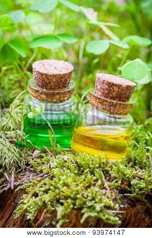 Bottles Of Essential Oil Or Magic Potion On Moss In Forest