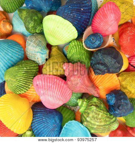 Custom colourful Shells Closeup
