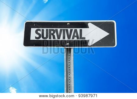 Survival direction sign with a beautiful day