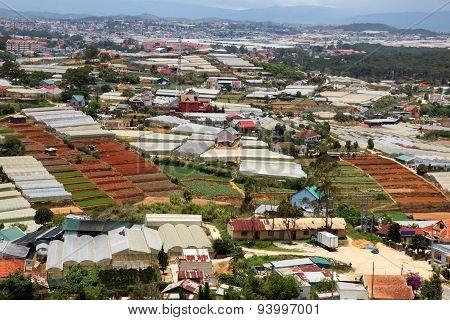 Dalat - Vietnam - Urban Growth Versus Agriculture