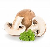 picture of champignons  - Brown champignons mushrooms close - JPG