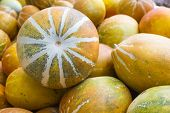 stock photo of muskmelon  - Muskmelon in the market ,Thailand - Cucumis melo