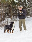 pic of dog park  - The man in the Park playing with the dog breed dogs - JPG