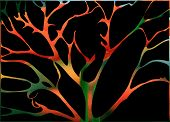 stock photo of fantastic  - Fabulous surround fantastic artistic collage with twigs and leaves - JPG