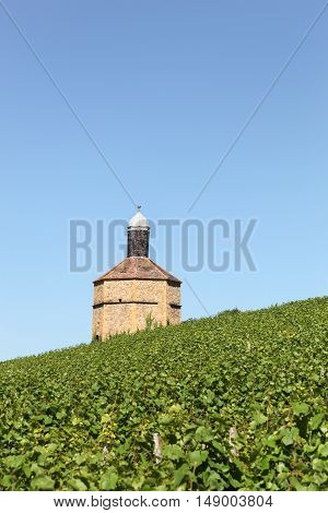 Old dovecote in Bagnols with vineyards, Beaujolais, France