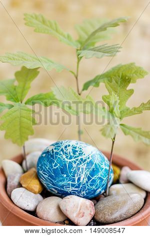 egg blue painted festive lies in a flowerpot