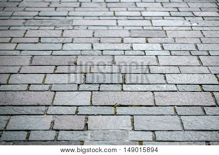 Rectangular brick paving stone road street in urban environment on grey background