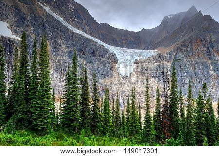 Mountain landscape with trees and glacier. Canada.