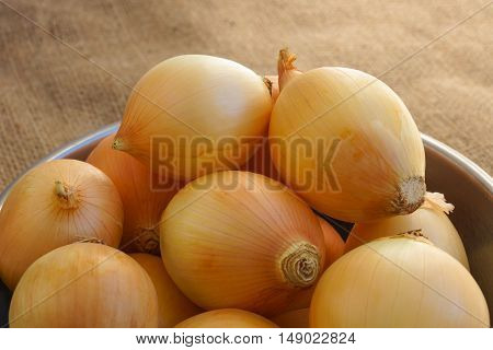White medium-size onions in an old aluminum bowl