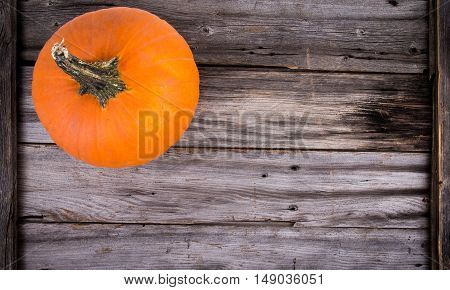 rustic pumpkin on wood high angle view