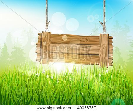 Spring morning - background with empty wooden sign with bokeh